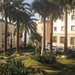 Park w La Orotava