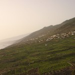 Wybrzeże Fuencaliente