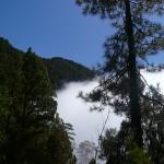 Na poziomie chmur