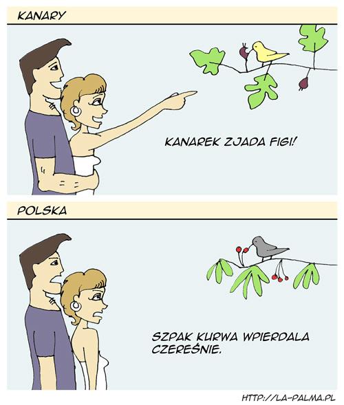 Polska-Kanary