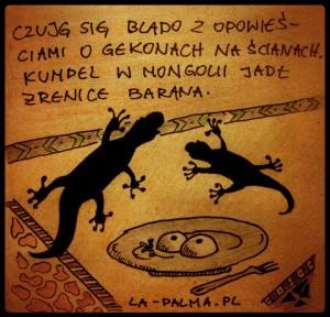 Gekony na ścianach