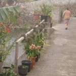 Starsze osoby na La Palmie to skarbnice historii